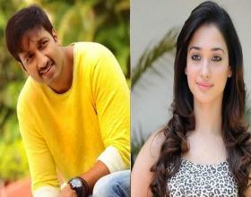 Gopichand and Tamannah For a Bollywood Remake?