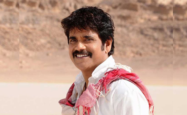 birthday-wishes-to-nava-manmadha-akkineni-nagarjuna