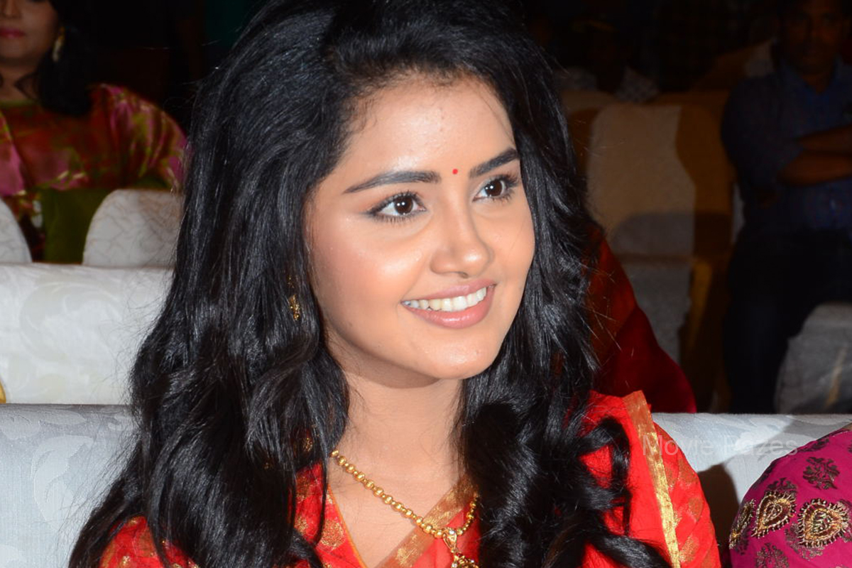 Anupama Parameswaran At Sathamanam Bhavati Success Meet