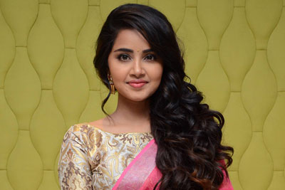 Anupama Prameswaran at Vunnadi Okkate Zindagi Thanks Meet