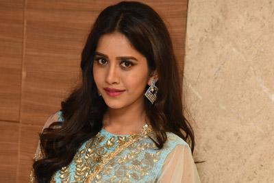 Nabha Natesh At Nannu Dochukuntuvate  Pre Release